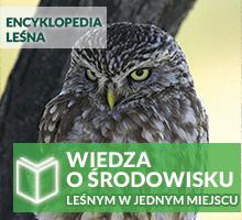 Encyklopedia Leśna